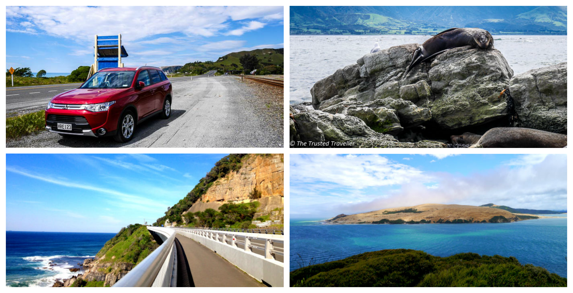 Driving through Australia and New Zealand
